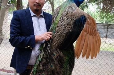 Cận cảnh vườn chim quý hiếm bậc nhất Hà thành